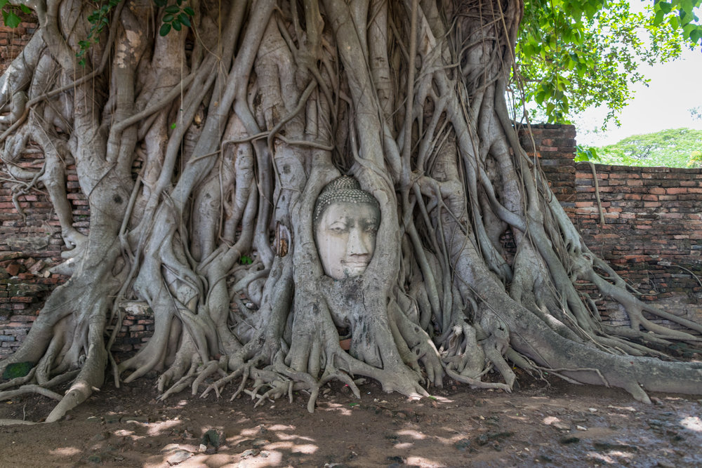 Ayutthaya_Wat Mahathat-1.jpg