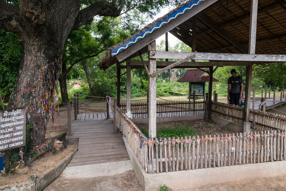 the killing tree, where children were beaten