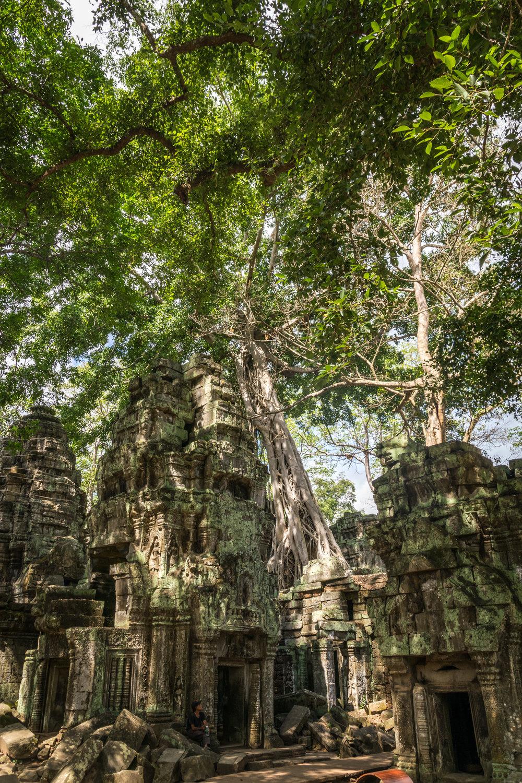 Siem Reap_AW Ta Prohm-5.jpg