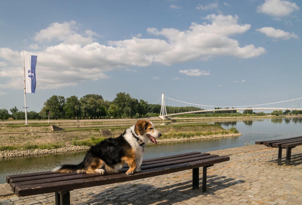 2_Osijek-10.jpg