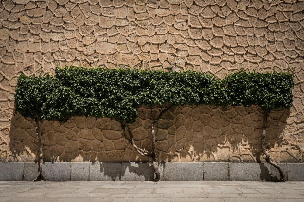 Segovia_textures-7.jpg
