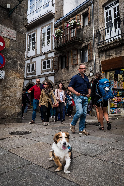 Santiago de Compostela-5.jpg