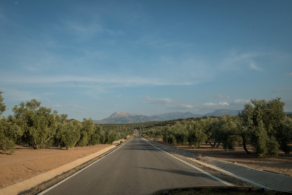 sw Spain countryside-2.jpg