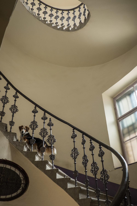 gorgeous apartment stairwell
