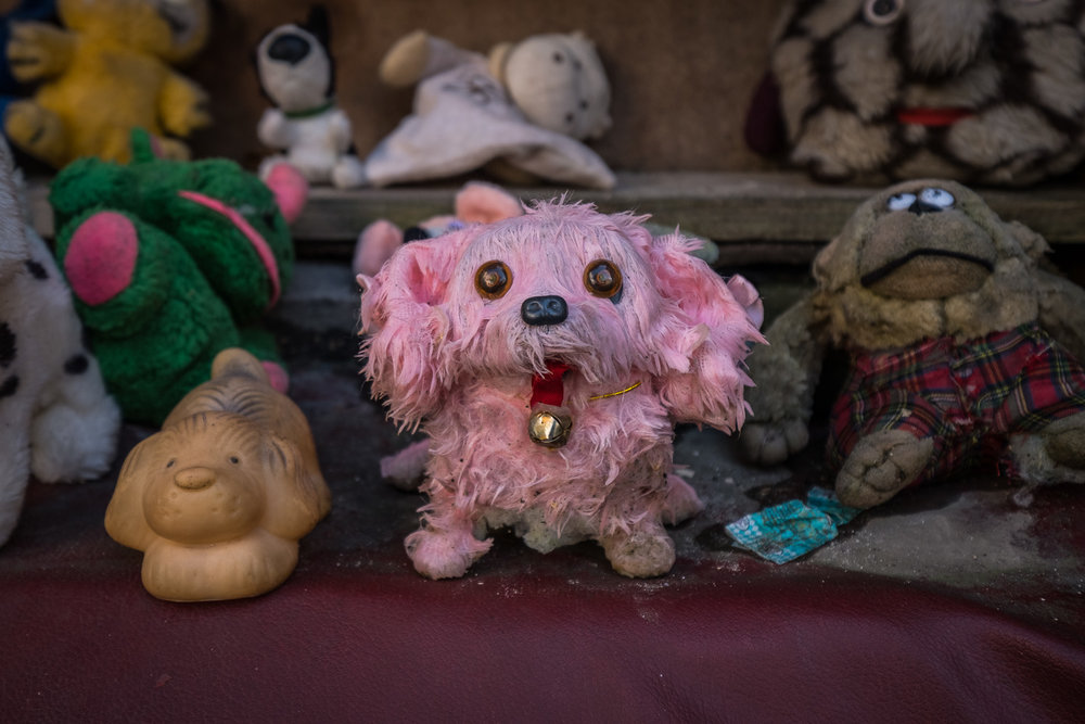 Lviv_stuffies-2.jpg