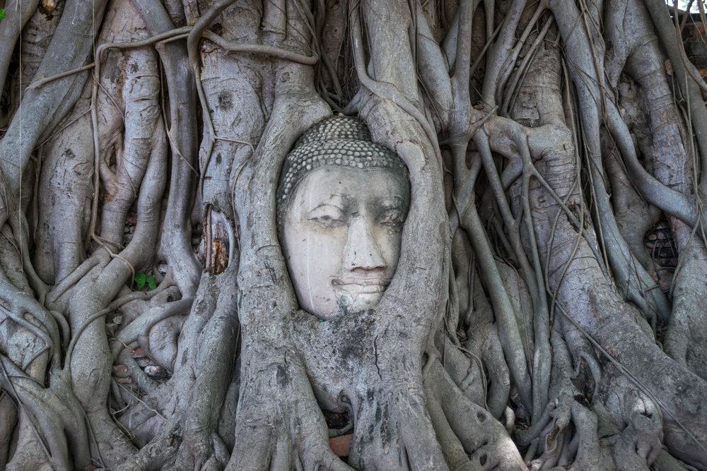 Thailand_Ayutthaya-1 (1).jpg