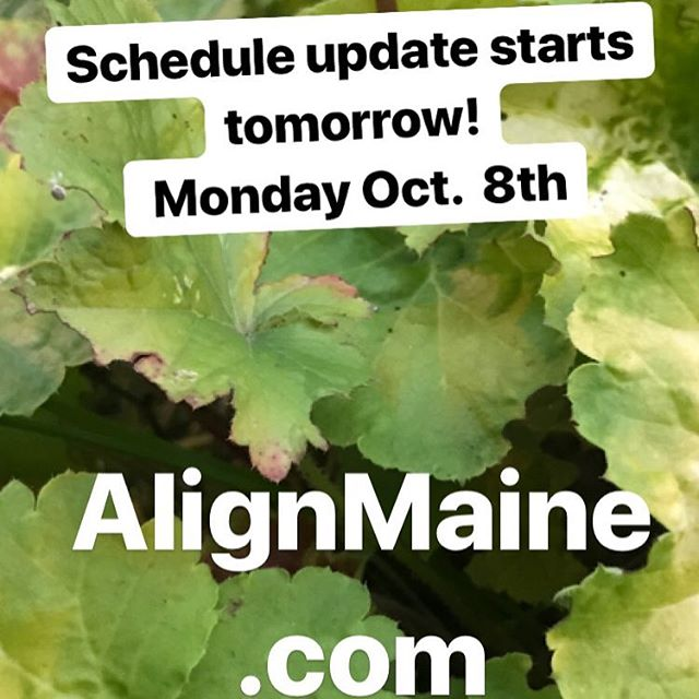 Updated schedule starts Monday. Check out new class offerings.  New 4:15pm and 6pm classes + all new Sunday. #maineyoga #alignthebody #alignthemind #heatedvinyasa #poweryogamaine #southportlandmaine