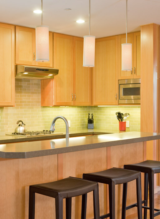 This modern kitchen hiding a complex seismic backbone, which opens the space for a light and airy galley kitchen. It is compact and efficient for city living.