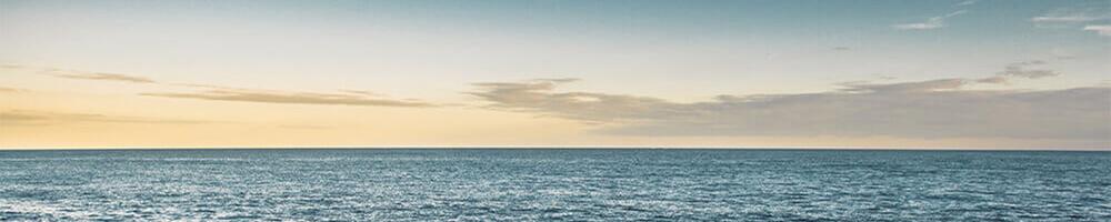 WaterMusic-Banner-Web.jpg