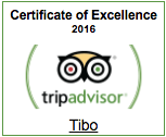Tibo—TripAdvisor