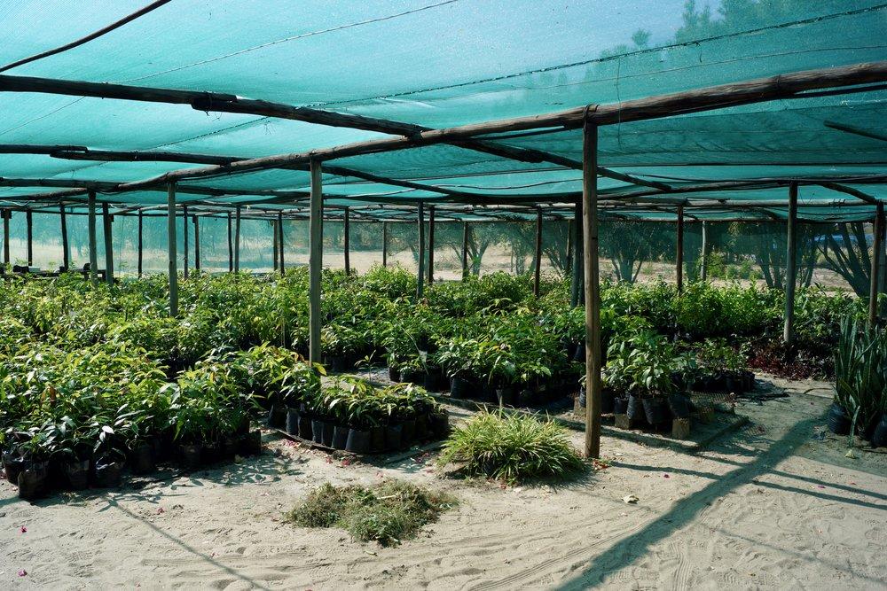 UNAM Ogongo Campus Farm