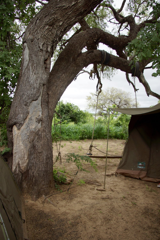 Buffalo Camp