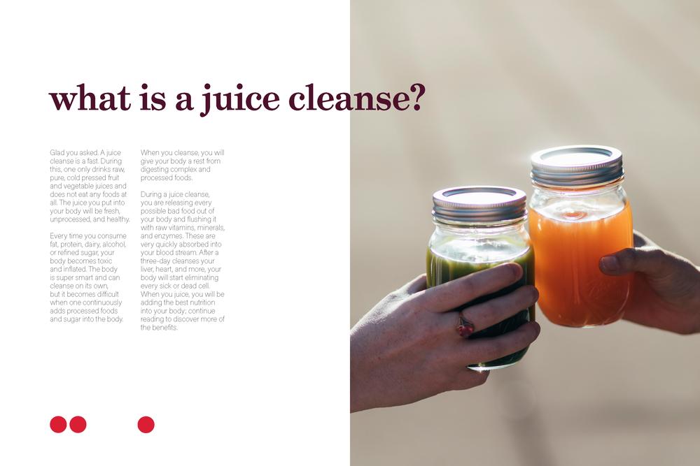 Soul Juicin juice cleanse zine_Page_3.png