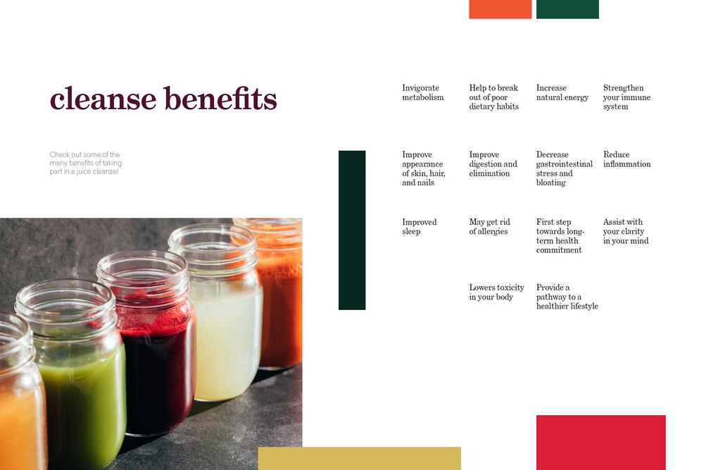 Soul Juicin juice cleanse zine_Page_5.png