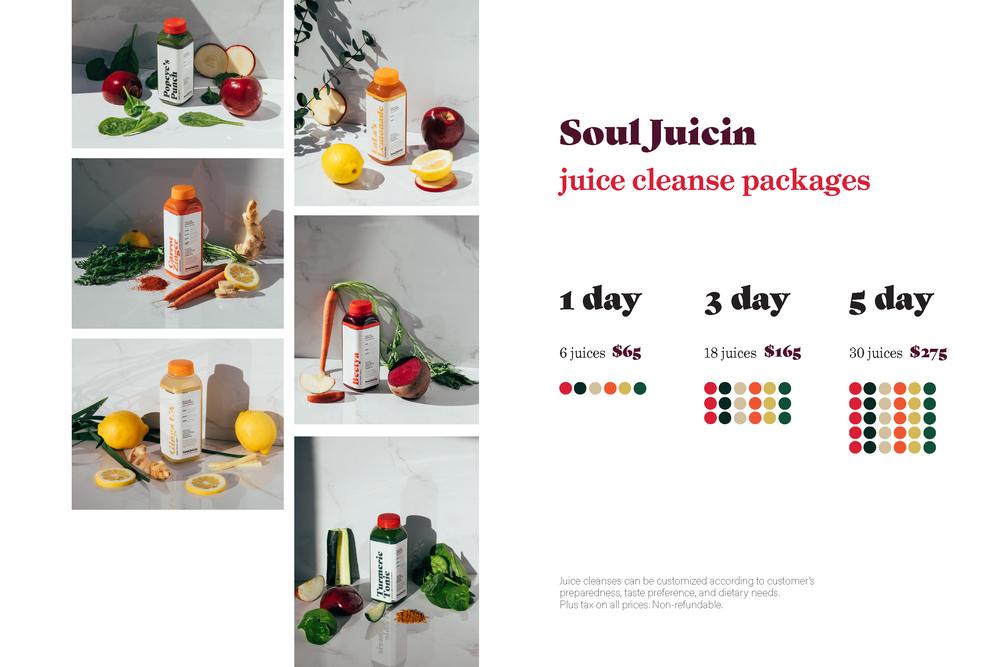 Soul Juicin juice cleanse zine_Page_7.png