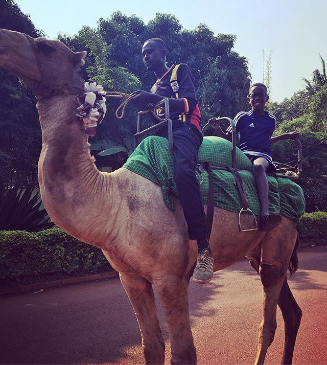 So, this camel was just walking down the street and we grabbed the opportunity to jump on! #hetriedtotakeoffwithelijahonthecamel #hesaiddontworryladyillbringhimback #ummmnogivememykidback #illtakethatcameldown