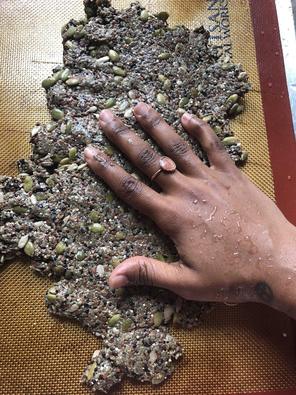 vsfcb seed crackers