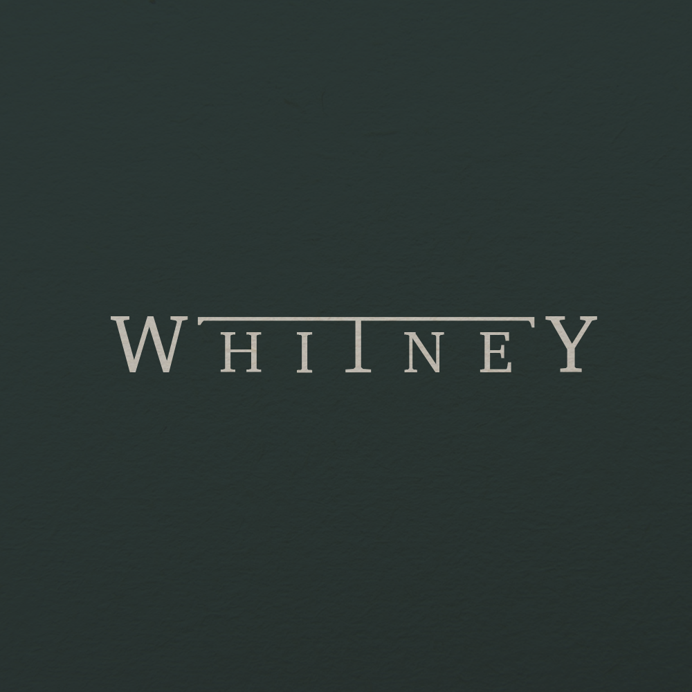 Visualizing a persona - Whitney is an indie band based out of Chicago with an interesting backstory. After two guys, Max and Julien, both went through rough breakups, they started to create music together. Through the creation of music, they felt they were able to free themselves of their heartbreak through the alternate persona