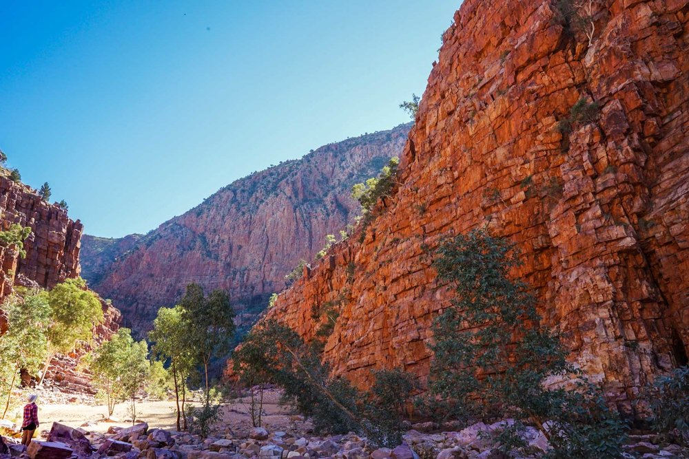 There's quite a few side walk options along the Larapinta Trail. Don't miss the Pound Walk, at Ormiston Gorge. The Pound Walk is a 7km loop leaving from near the Ormiston Gorge kiosk. It climbs through the Pound, an area of rolling hills and cliffs, before looping back to its start through Ormiston Gorge.