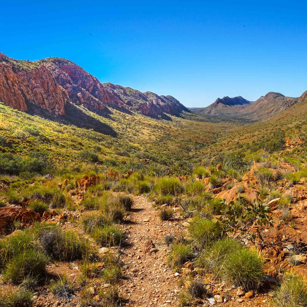 Section 9 of the Larapinta Trail