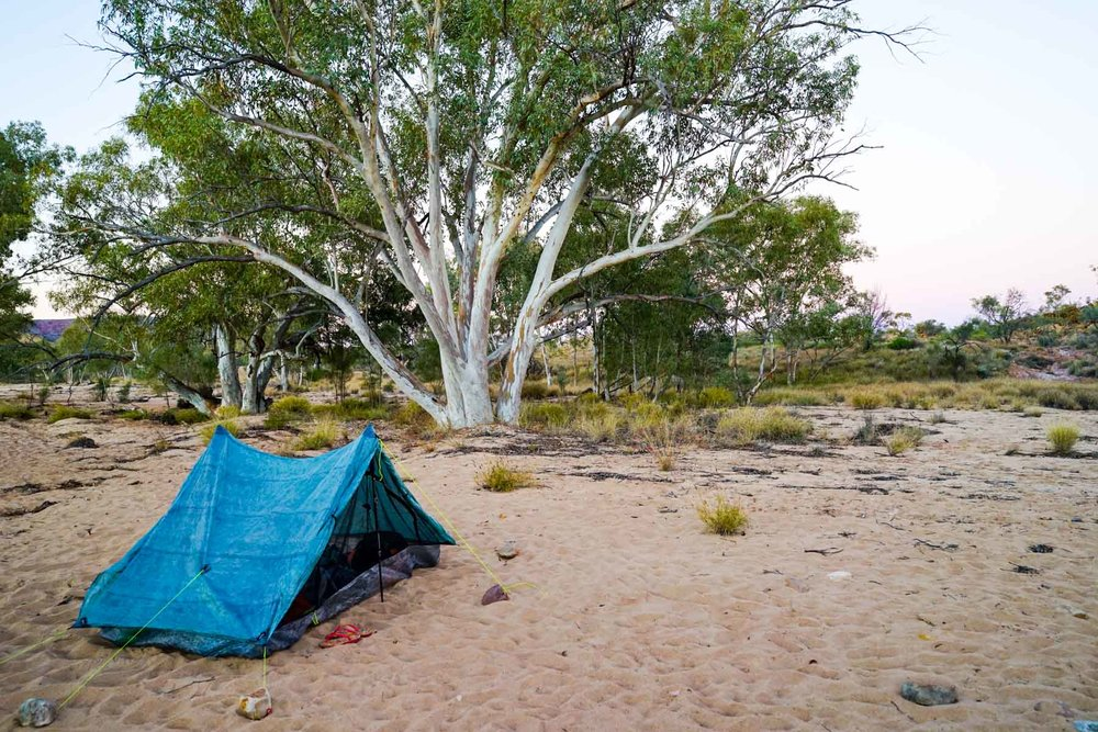 Camping at Finke River, between sections 10 and 11 of the Larapinta Trail