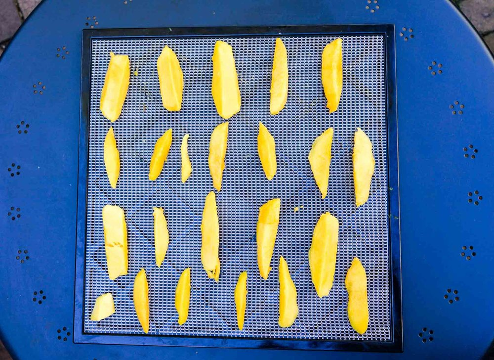 Lay the pieces of mango on a dehydrator tray.