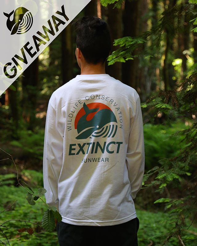 In honor of reaching 5,000 followers, we are thanking YOU by doing a GIVEAWAY of our brand new T-Shirt! Enter for your chance to win by following these easy steps: 1. Like this photo 2. Follow us if you aren't already  3. Tag 3 of your friends who love wildlife, each friend tagged after 3 gives you an extra entry. (Fake accounts are not eligible). Winner will be chosen at random and announced on Friday 6/17, good luck fellow animal lovers! 🦁🐨🐋🐼🐢🐘🐯🐙🐬🐒