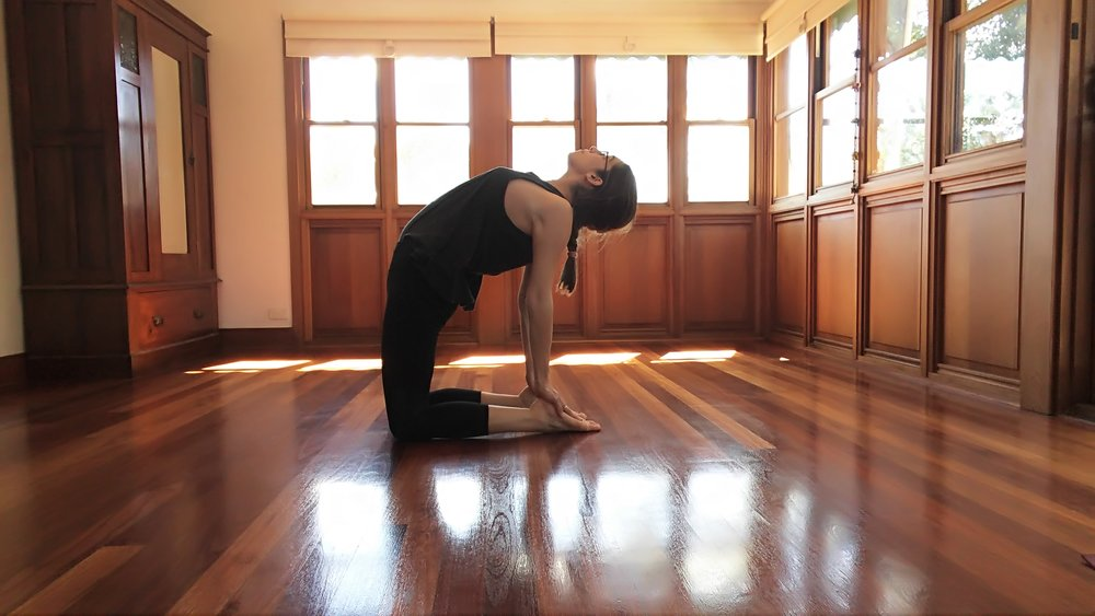 Following from last pose, if it feels safe for your body, continue broadening chest and release the hands towards the feet. If you feel pain in your lower back you have gone too far - remain with the previous pose as your full expression.