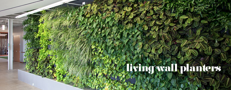 Etonnant Woolly Pocket   Living Wall Planters