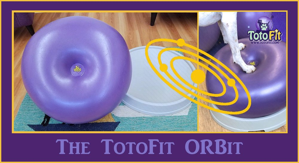 Orbit-Ad.jpg