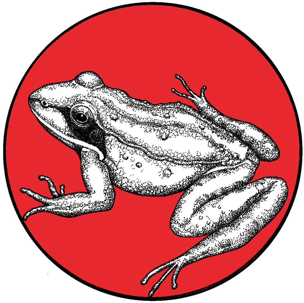 frog_FINAL copy.jpg