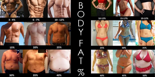 Every person on this chart has abs they re just under different amounts of body fat. The people with higher body fat could even have stronger abs than those of lower body fat, you just can't see them as they are hidden!