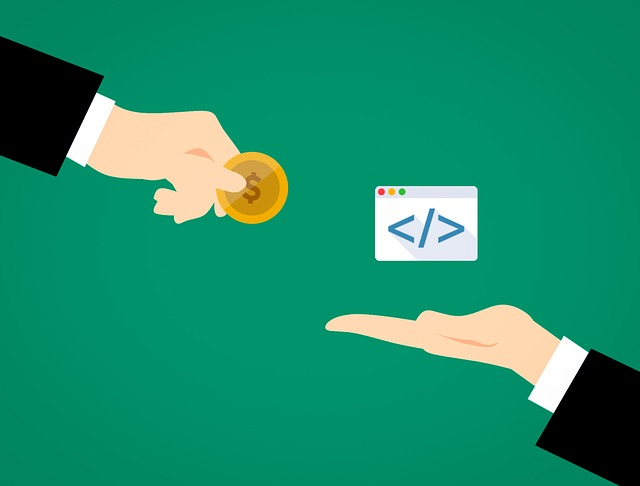 software-developer-3182374_640.jpg