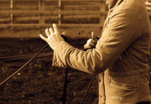 Setting boundaries in horsemanship
