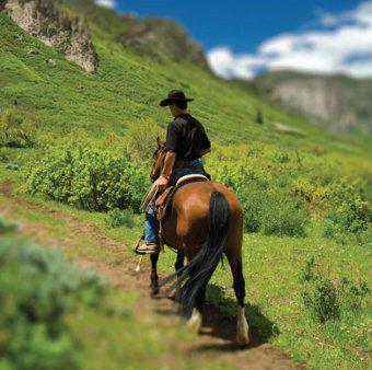 Western trail riding