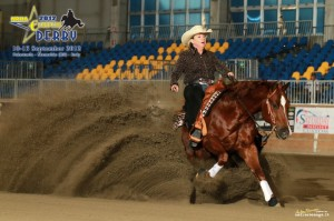 western riding reining