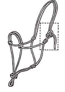 ropehalter4-212x300.jpg
