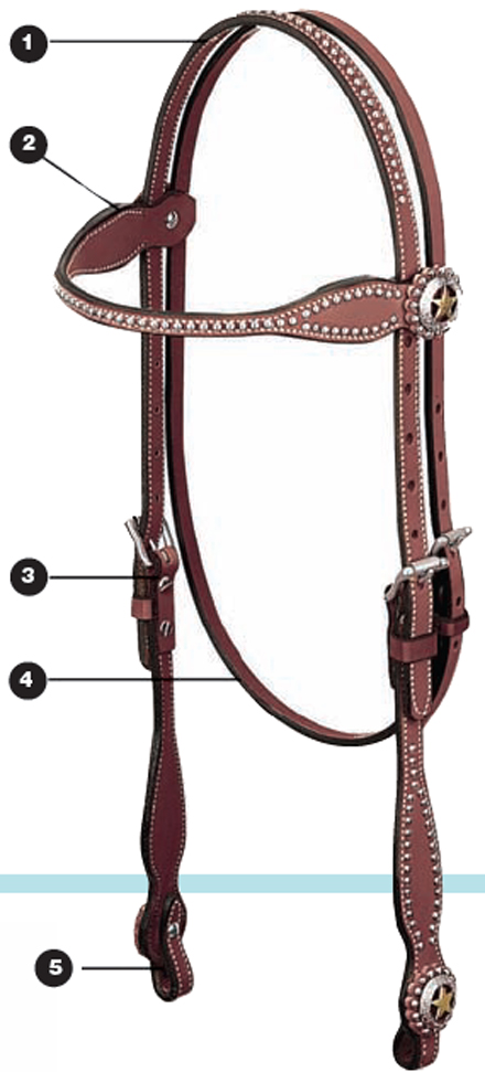 bits-and-bridles1.jpg