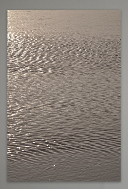 Tomomichi Morifuji,  The Surface of Bronze-Gold Water