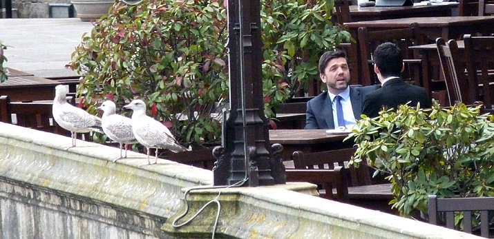 Secretary of State for Work and Pensions, Stephen Crabb, discussing the ageing of Herring Gulls, on the balcony of the Houses of Parliament.