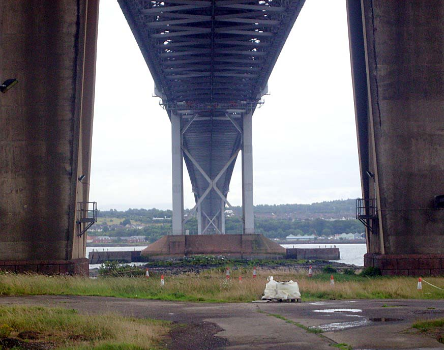 THE NOT-SO-PEACEFUL TERN COLONY UNDER THE FORTH ROAD BRIDGE