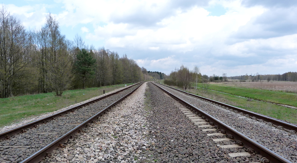 The railway with two guages of track - one european-sized going into Belarus, the other russian-sized coming into Poland. The distant trees are in Belarus.