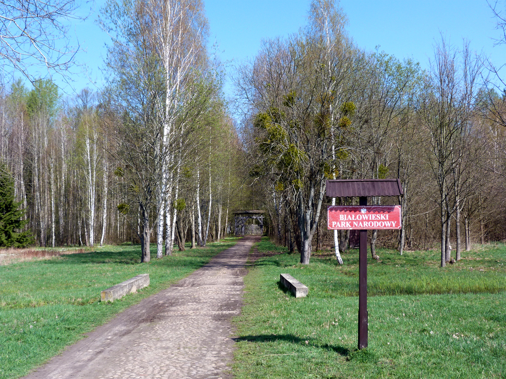 Entrance to the ancient reserve.