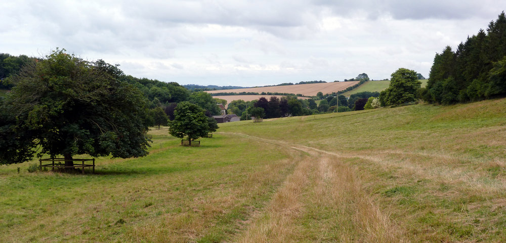 Field behind Manor Farm, Rockbourne