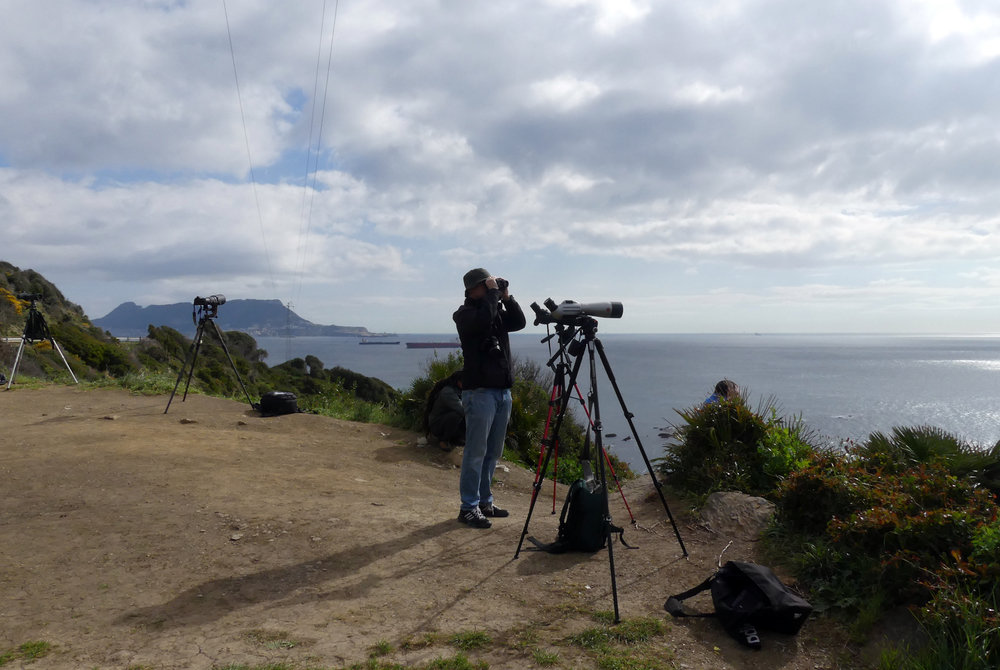 The watchpoint at  Punta Carnero, with the Rock of Gibraltar across the bay.