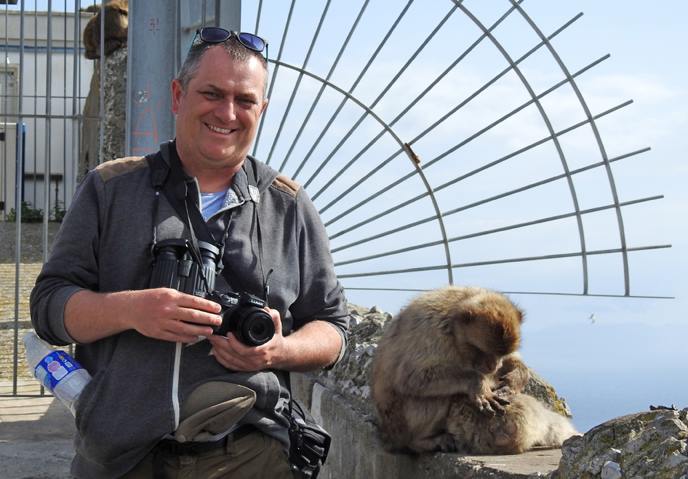 Barbary Macaques and a large ape, Gibraltar