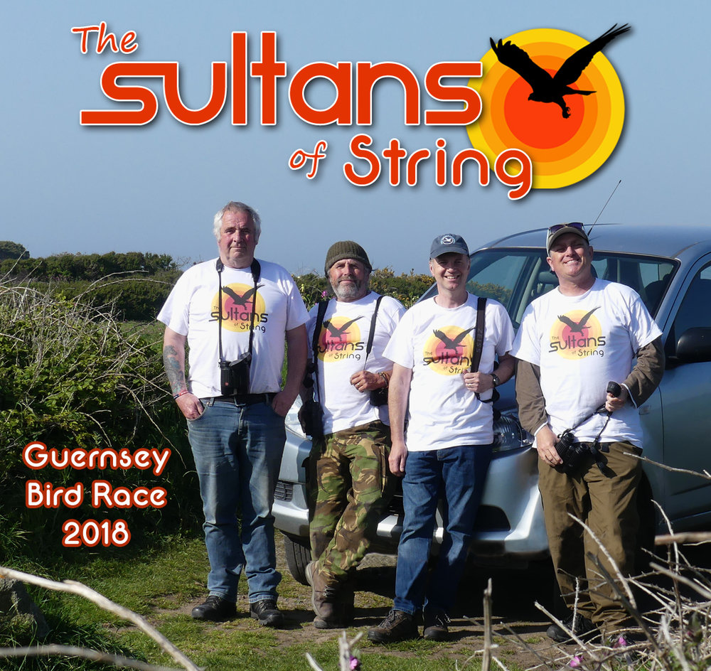 The Sultans of String 2018 - Chris M, Mark G, Wayne T, Mark L.