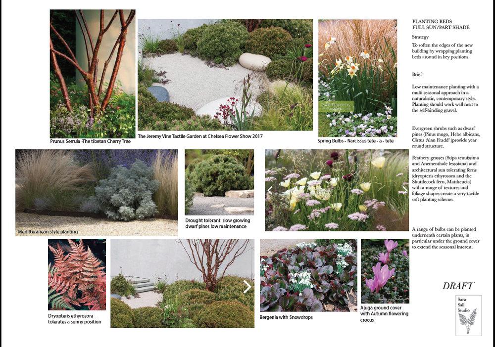 planting beds.jpg
