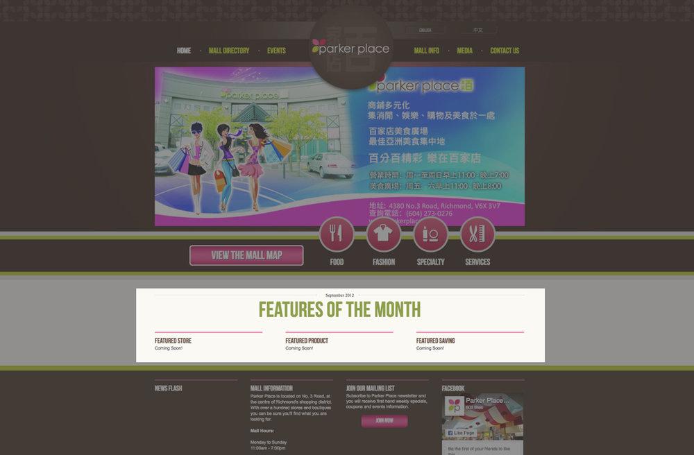 Site Audit homepage 1.jpg
