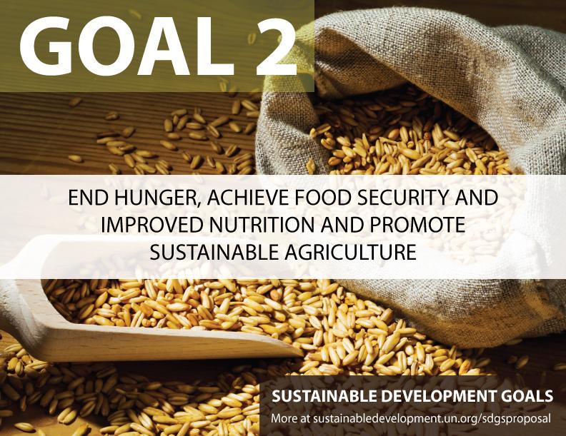 SDG-Goal-2-hunger.jpg